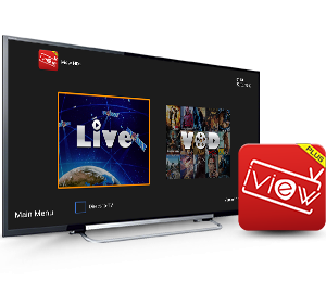 iView HD Plus 1 Month Hosting Service